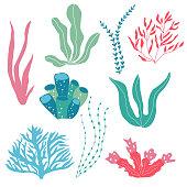 Vector illustration of watercolor sea plants.