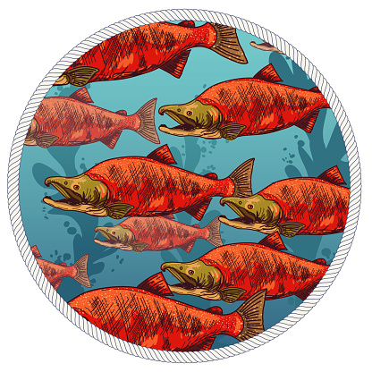 Underwater Scene With Fish