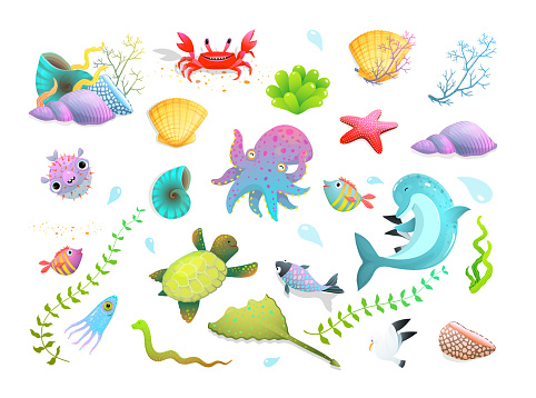 Underwater sea life, ocean creatures and shells clipart collection isolated on white