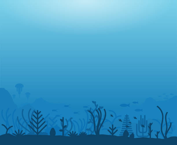 Underwater sea life Underwater ocean scene. Deep blue water, coral reef and underwater plants with fish. Marine water life and ground with rocks. Modern line illustration. underwater stock illustrations