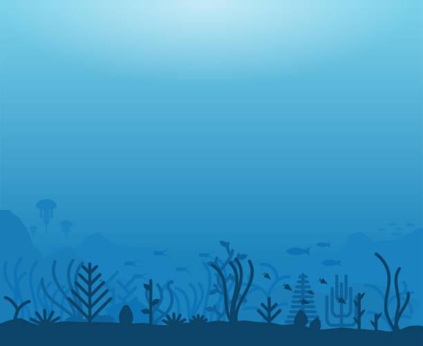 unterwasserwelt - unterwasseraufnahme stock-grafiken, -clipart, -cartoons und -symbole