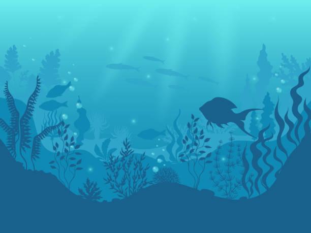 수 중 실루엣 배경입니다. 해저 산호초, 바다 물고기와 해양 조류 만화 장면. 벡터 아쿠아 라이프와 바다 바닥 - 바다 stock illustrations
