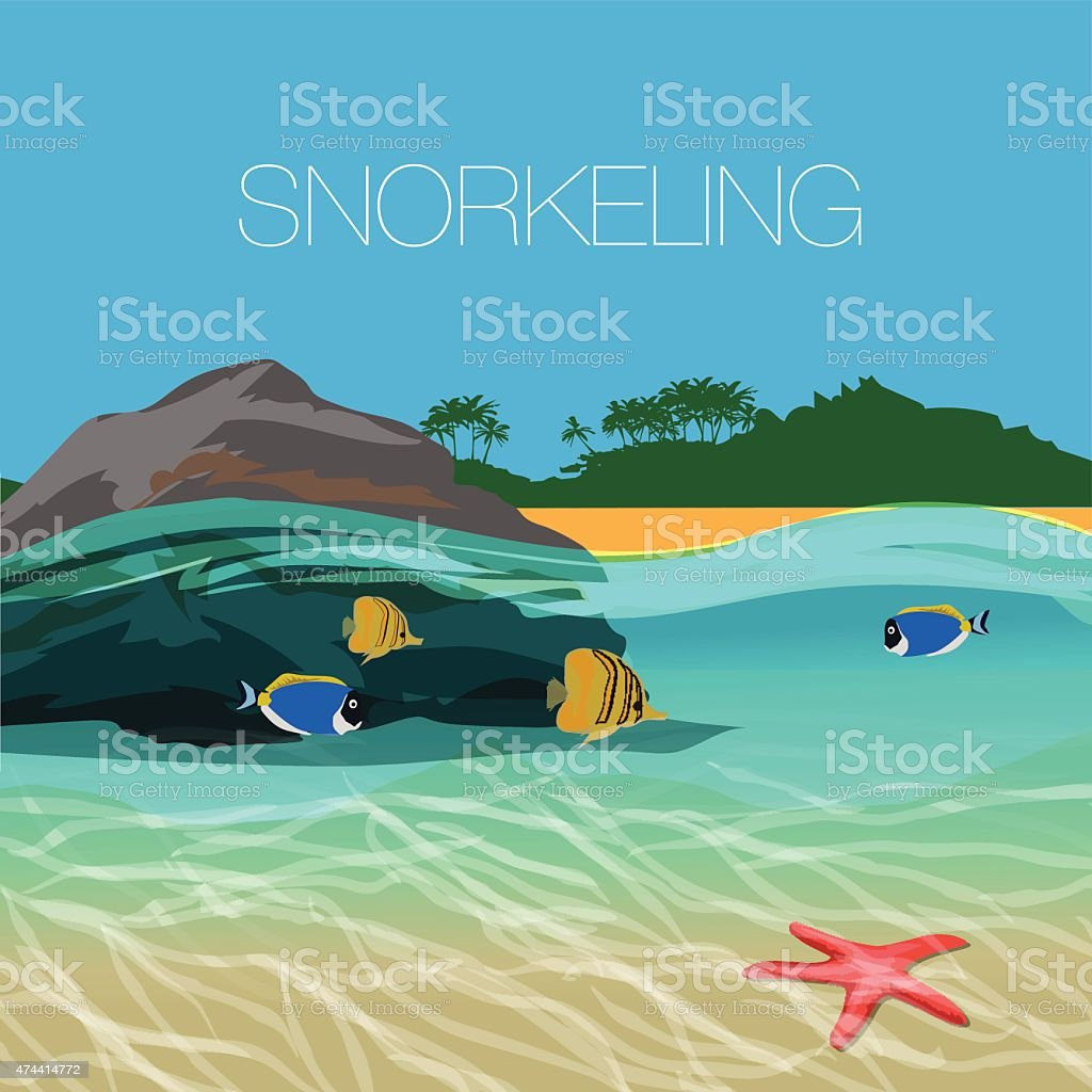 Underwater  snorkeling in a clear tropical water at coral reef vector art illustration