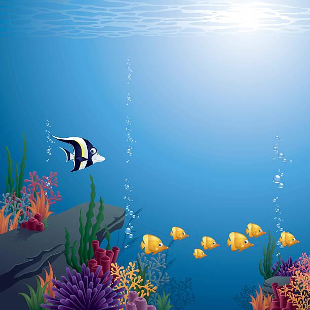 illustrazioni stock, clip art, cartoni animati e icone di tendenza di subacqueo - under the sea fish