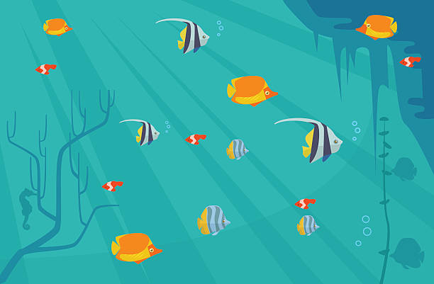 illustrazioni stock, clip art, cartoni animati e icone di tendenza di underwater with fish. vector flat cartoon illustration - immerse in the stars