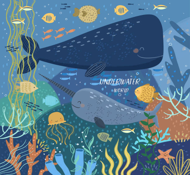Underwater world! Vector cute illustration ecosystem of ocean world, whale, narwhal, puffer fish, various fish, jellyfish, starfish, corals, seaweed, water plant. Drawings for card, poster or postcard vector art illustration
