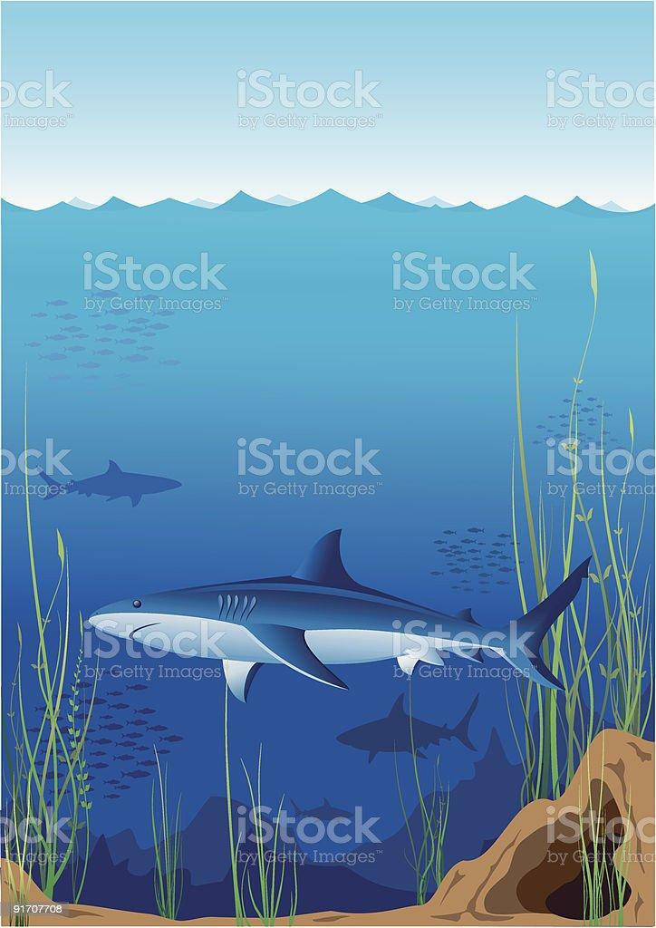 Underwater world royalty-free stock vector art