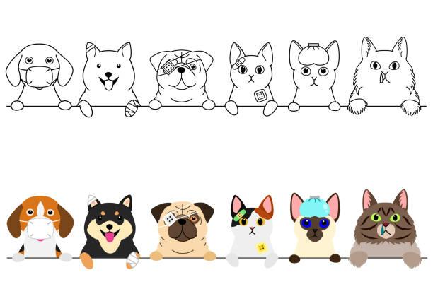 不幸な病気の猫と犬の国境 ベクターアートイラスト