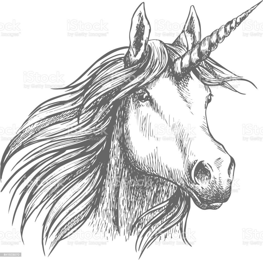 Unicorn horse animal vector sketch vector art illustration