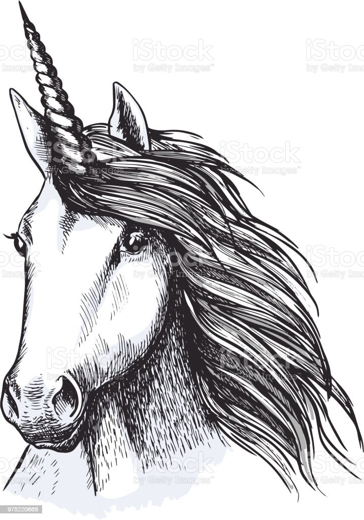Unicorn Horse Head Sketch For Tattoo Design Stock Vector Art More