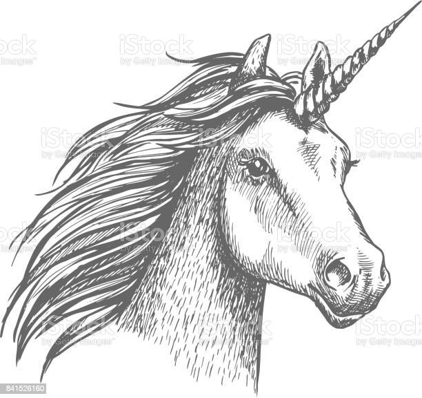 Unicorn vector sketch isolated head vector id841526160?b=1&k=6&m=841526160&s=612x612&h=h12o3jwfoh0a 16cjak5jszdlgislvlkxme funedy4=