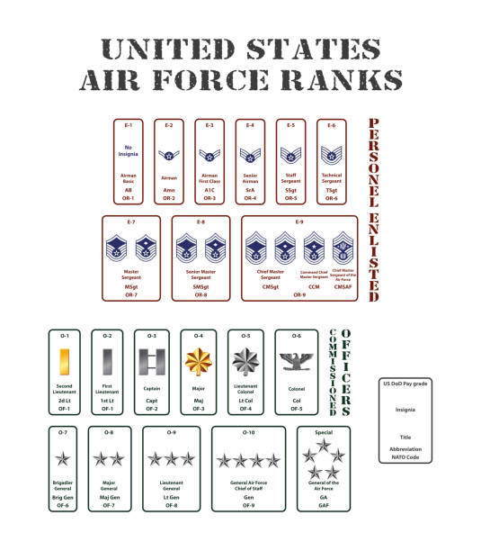 united states air force ranks set of the ranks of the united states army corps major military rank stock illustrations