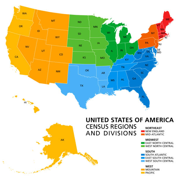 United States, Census regions and divisions, political map vector art illustration