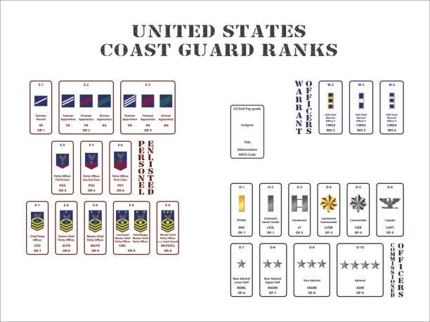 ilustraciones, imágenes clip art, dibujos animados e iconos de stock de estados unidos rangos de la guardia costera - oficial rango militar