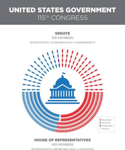 united states congress infographic - abgeordnetenhaus stock-grafiken, -clipart, -cartoons und -symbole
