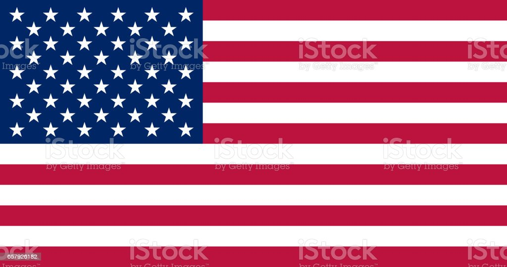 United states flag. Standard sizes and colors. Vector illustration. vector art illustration