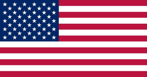 ilustraciones, imágenes clip art, dibujos animados e iconos de stock de bandera de estados unidos. los tamaños estándar y colores. ilustración de vector. - bandera de estados unidos