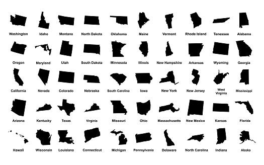 United States of America. 50 States. Vector illustration