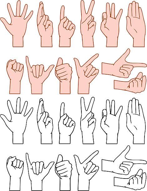 Universal Hand Signs Gestures vector art illustration