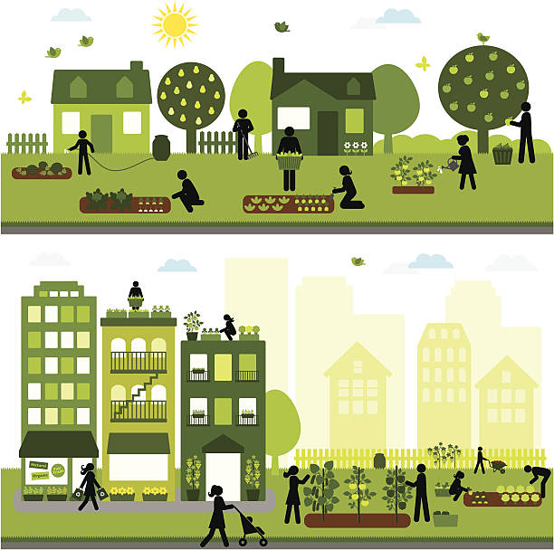 Urban Agriculture Community Urban farming community - horizontal design urban gardening stock illustrations