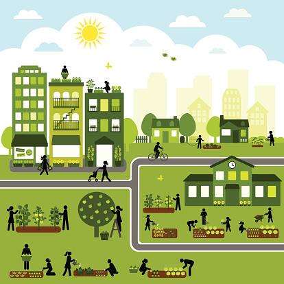 Urban Agriculture Community
