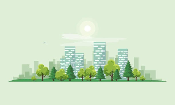 ilustrações de stock, clip art, desenhos animados e ícones de urban city landscape street road with trees and skyline background - cenário