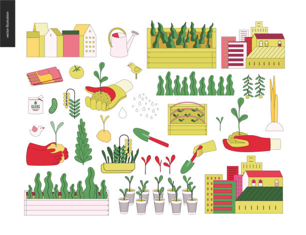 Urban farming and gardening elements Urban farming, gardening or agriculture. Tools, the greens, vegetables, houses and seedbeds set urban gardening stock illustrations