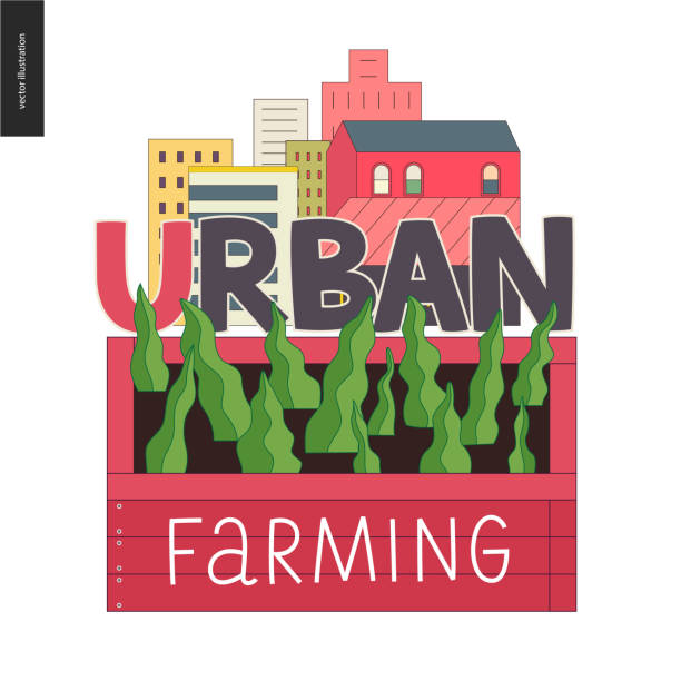 Urban farming and gardening logo Urban farming, gardening or agriculture sign logo. A wooden seedbed with leaves of salad, a house on the background urban gardening stock illustrations