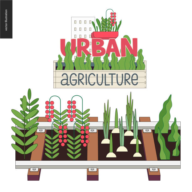 Urban farming and gardening on the rails Urban farming, gardening or agriculture. Seedbed made in railing and icon urban gardening stock illustrations