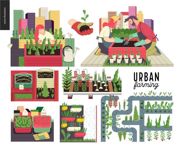 ilustrações, clipart, desenhos animados e ícones de agricultura urbana e conjunto de jardinagem - horta
