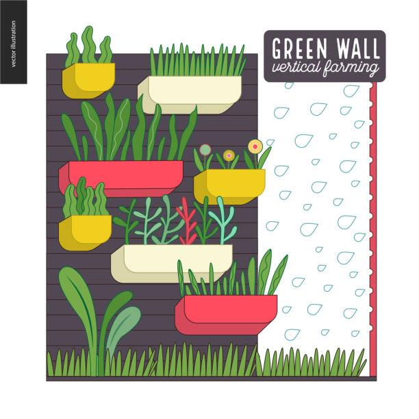 Urban farming and gardening - vertical farming Urban farming, gardening or agriculture. Green wall - vertical farming. A wall with flowerpots and irrigating system urban gardening stock illustrations