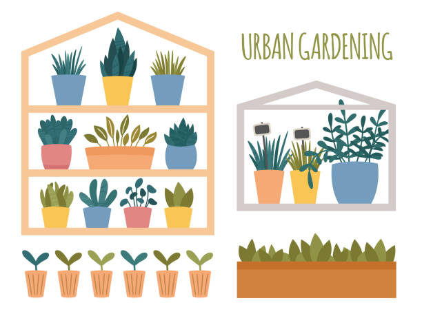 Urban gardening set with potted plants elements. Green mini house with pots, box and cups with sprout and seedling. Flat cartoon scandinavian style.Vector illustration isolated on white background Urban gardening set with potted plants elements. Green mini house with pots, box and cups with sprout and seedling. Flat cartoon scandinavian style. Vector illustration isolated on white background urban gardening stock illustrations