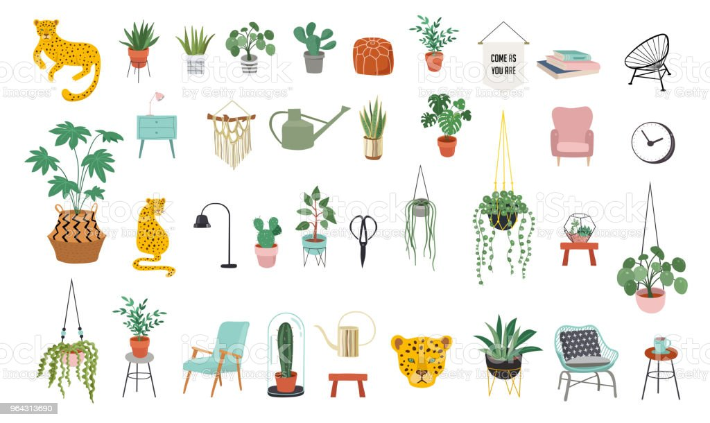 decor urban jungle plants planters macrame clip leaves vector tropical cacti trendy elements illustration illustrations cactus vectors knitted israel clothing