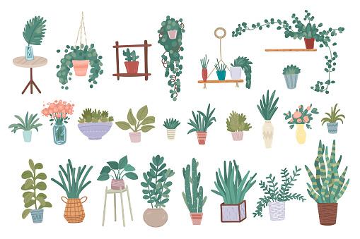 Urban jungle. Vector set of plants in scandinavian style
