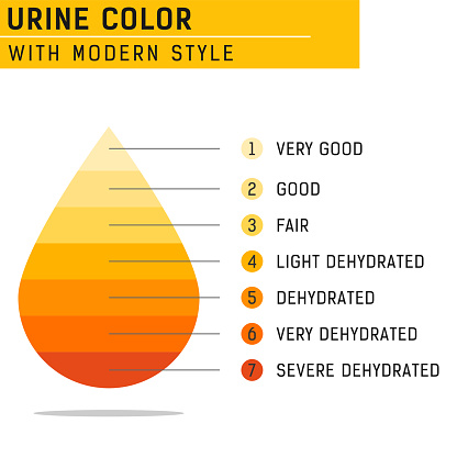 Urine color vector illustration isolated on white background. Vector for all project, web design and other. Equipped with complete information and easy to understand. Flat design. EPS file