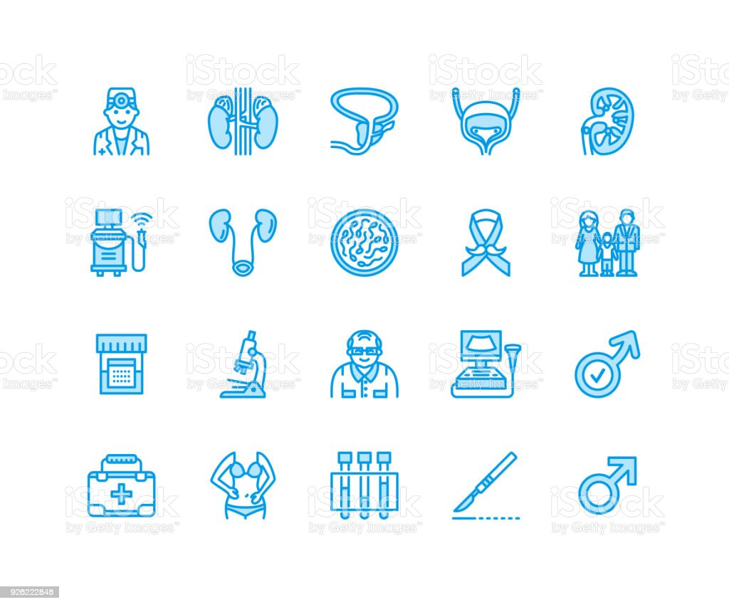 Urology vector flat line icons. Urologist, bladder, kidneys, adrenal glands, prostate. Linear medical pictograms with editable stroke for clinic, potency problem. Pixel perfect 64x64 vector art illustration