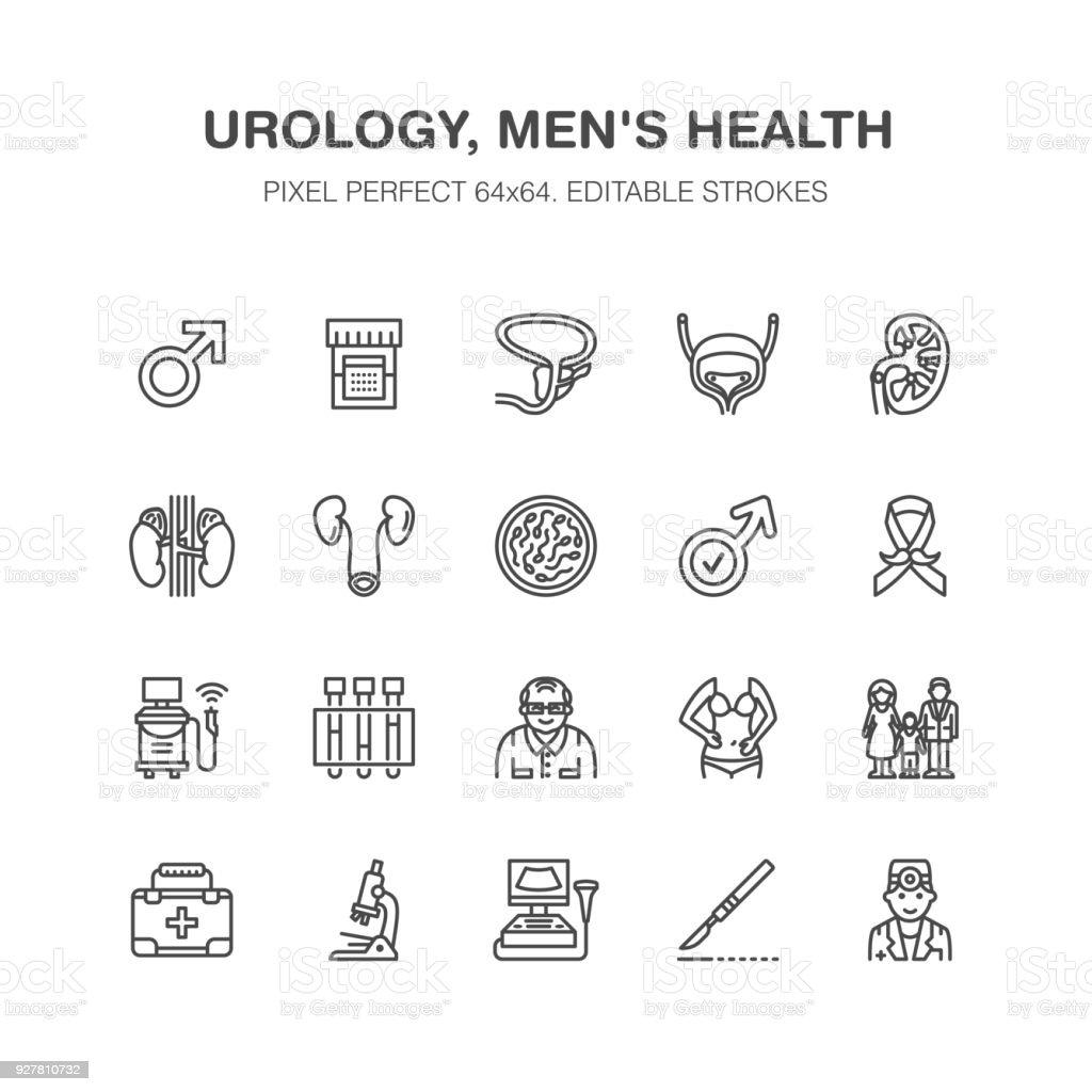 Iconos de línea plana de vector de Urología. Urólogo, vejiga, riñones, glándulas suprarrenales, próstata. Lineales pictogramas médicos con trazo editable para clínica, problema de potencia. Pixel perfecto 64 x 64 - ilustración de arte vectorial