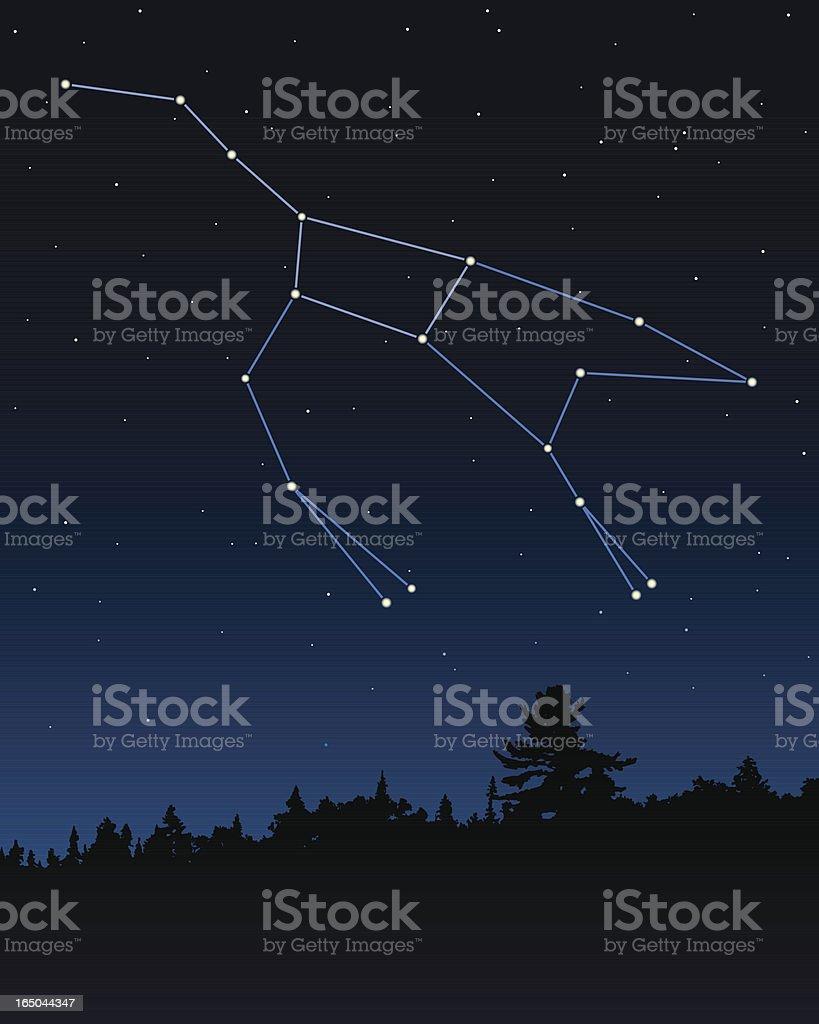 Ursa Major (The Great Bear) Constellation vector art illustration