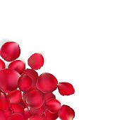 Valentine card - red rose petals. EPS 10