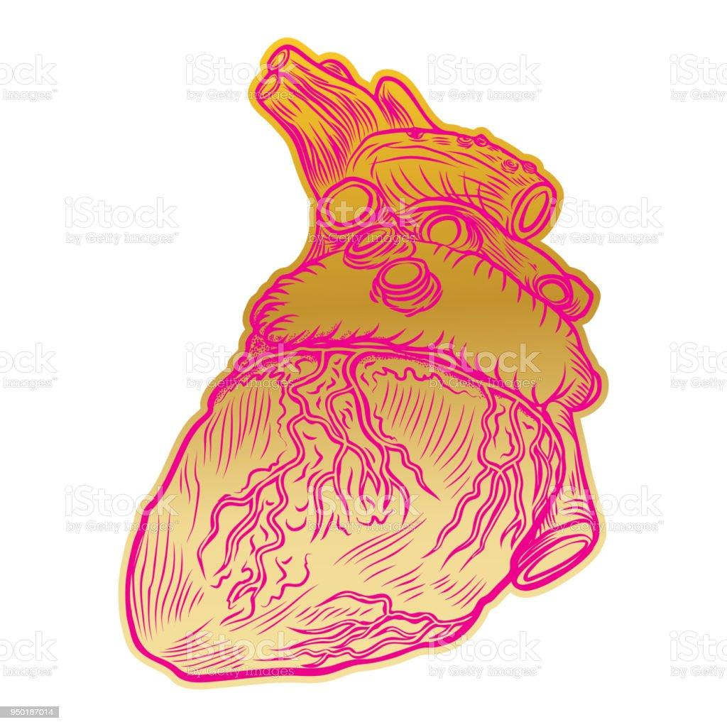 Ilustración de Día De San Valentín Corazón Humano Anatómico Imprimir ...