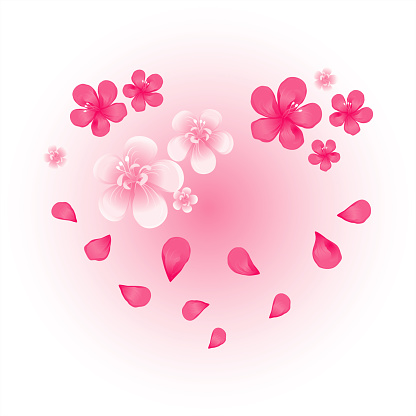 Valentines day card. Pink flying petals and flowers on soft light pink background. Heart shaped flowers. Vector
