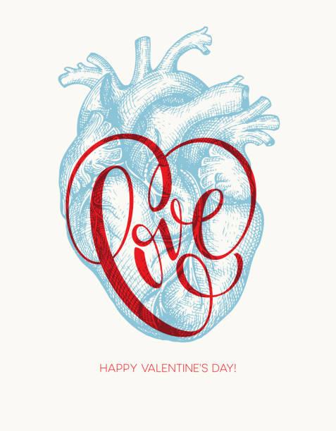 ilustrações, clipart, desenhos animados e ícones de cartão de dia dos namorados com corações e letras de amor. ilustração vetorial - biologia