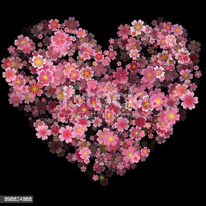Valentines Day Heart Made of Cherry Flowers Isolated on Black Background. Vector Illustration of a Happy Valentines Day Design, heart of flowers