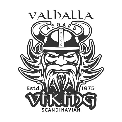 Valhalla Asgard, Viking warrior t-shirt print