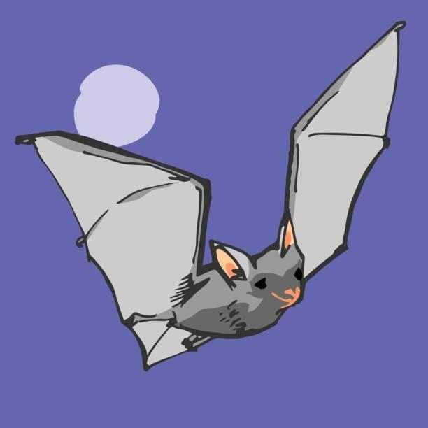 Vampire Bat vector art illustration