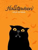 Vampire Black Cat