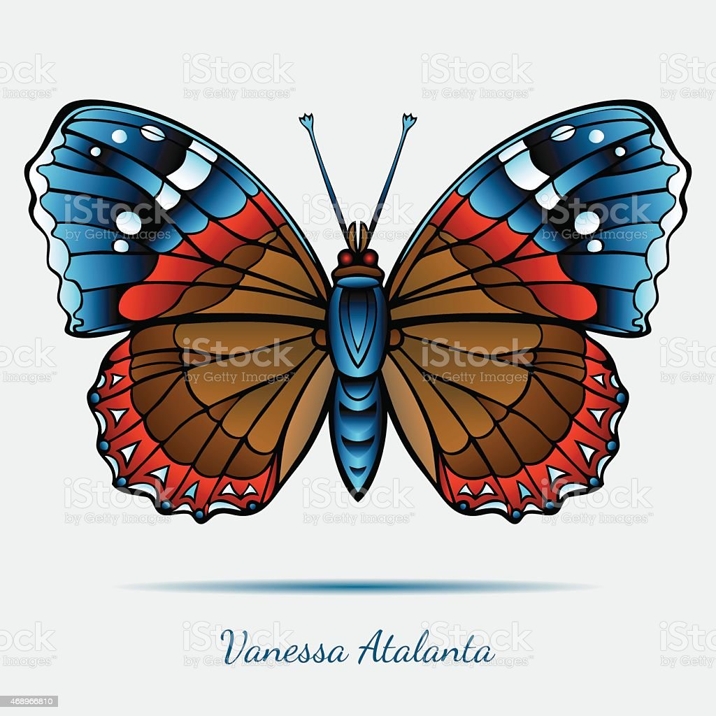Vanessa Atalanta Butterfly – Vektorgrafik