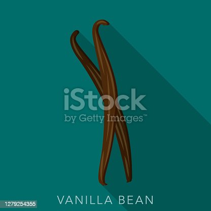 istock Vanilla Bean Herb and Spice Icon 1279254355