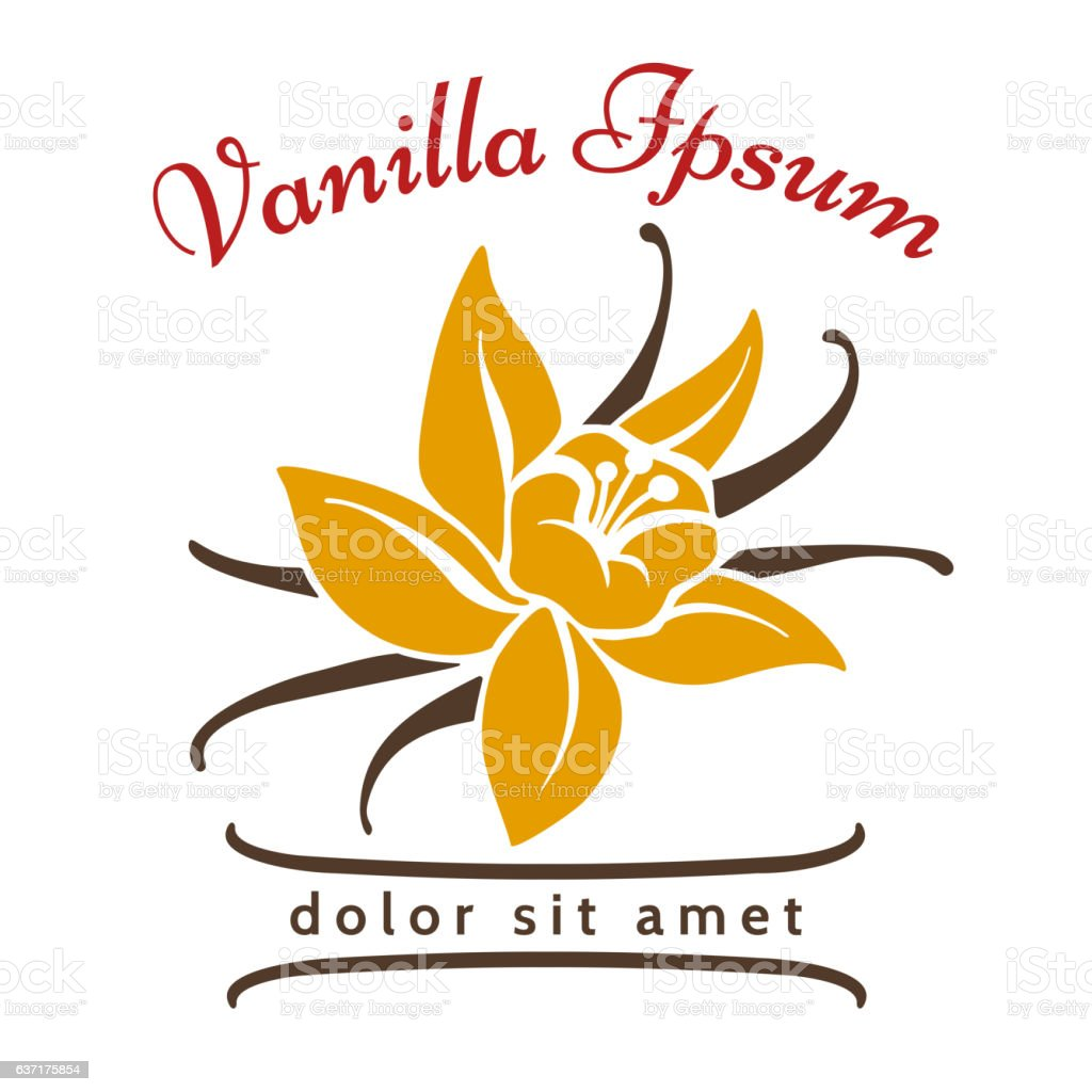 Vanilla dessert flavor logo vector art illustration