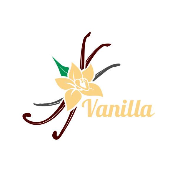 stockillustraties, clipart, cartoons en iconen met vanille bloem en peulen. vector pictogram silhouet geïsoleerd op een witte achtergrond. - vanille